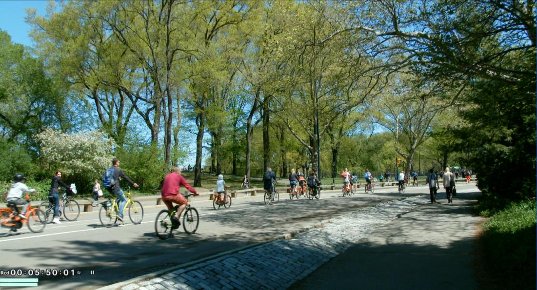 纽约之美--中央公园(Central Park)_图1-7