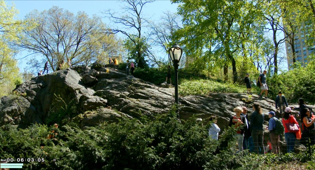纽约之美--中央公园(Central Park)_图1-9