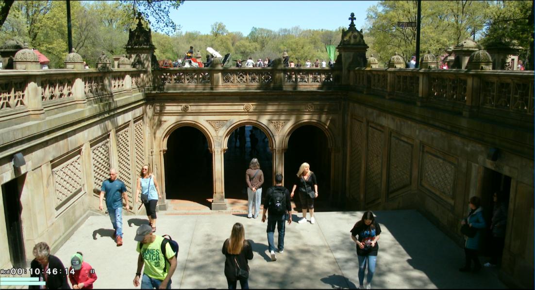 纽约之美--中央公园(Central Park)_图1-13