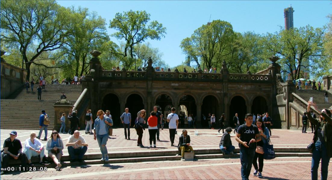 纽约之美--中央公园(Central Park)_图1-15