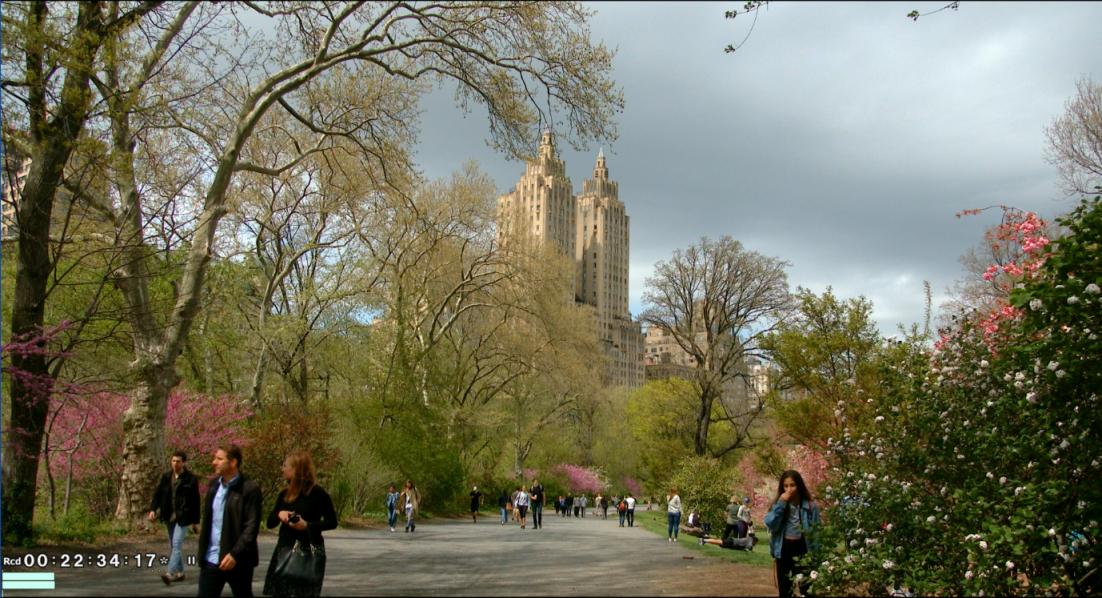 纽约之美--中央公园(Central Park)_图1-21