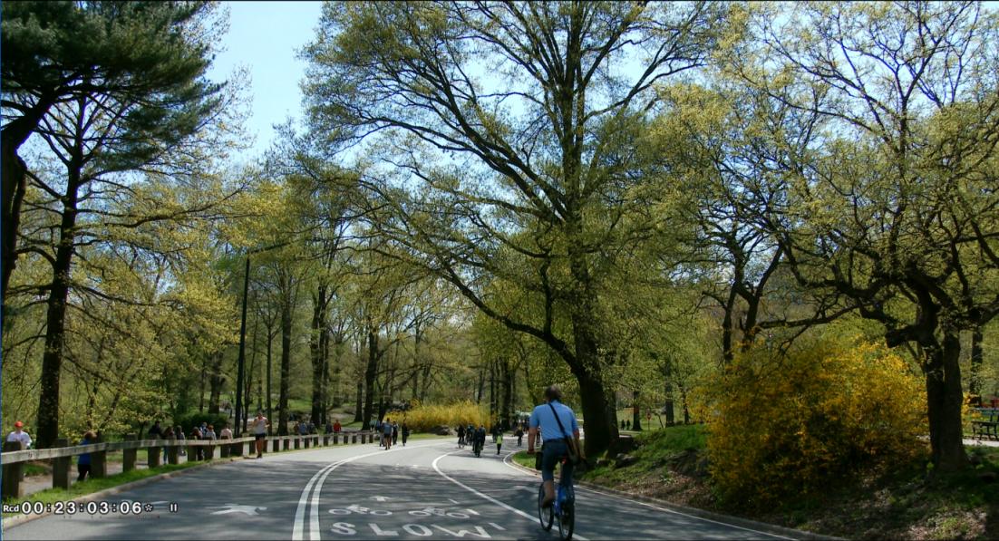 纽约之美--中央公园(Central Park)_图1-23