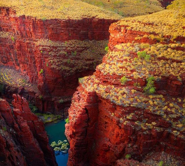 卡里吉尼国家公园----澳大利亚_图1-1