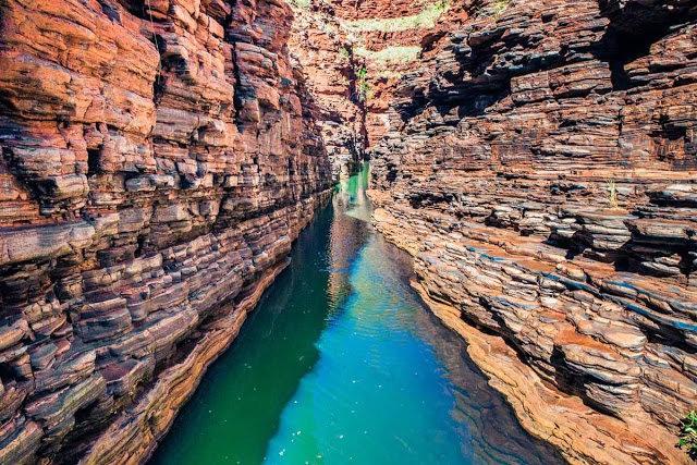 卡里吉尼国家公园----澳大利亚_图1-4