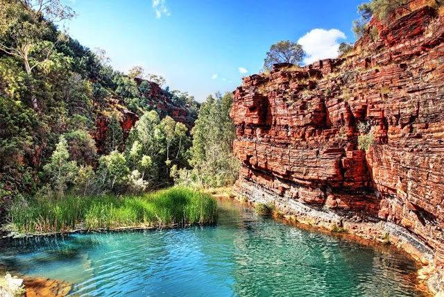 卡里吉尼国家公园----澳大利亚_图1-5