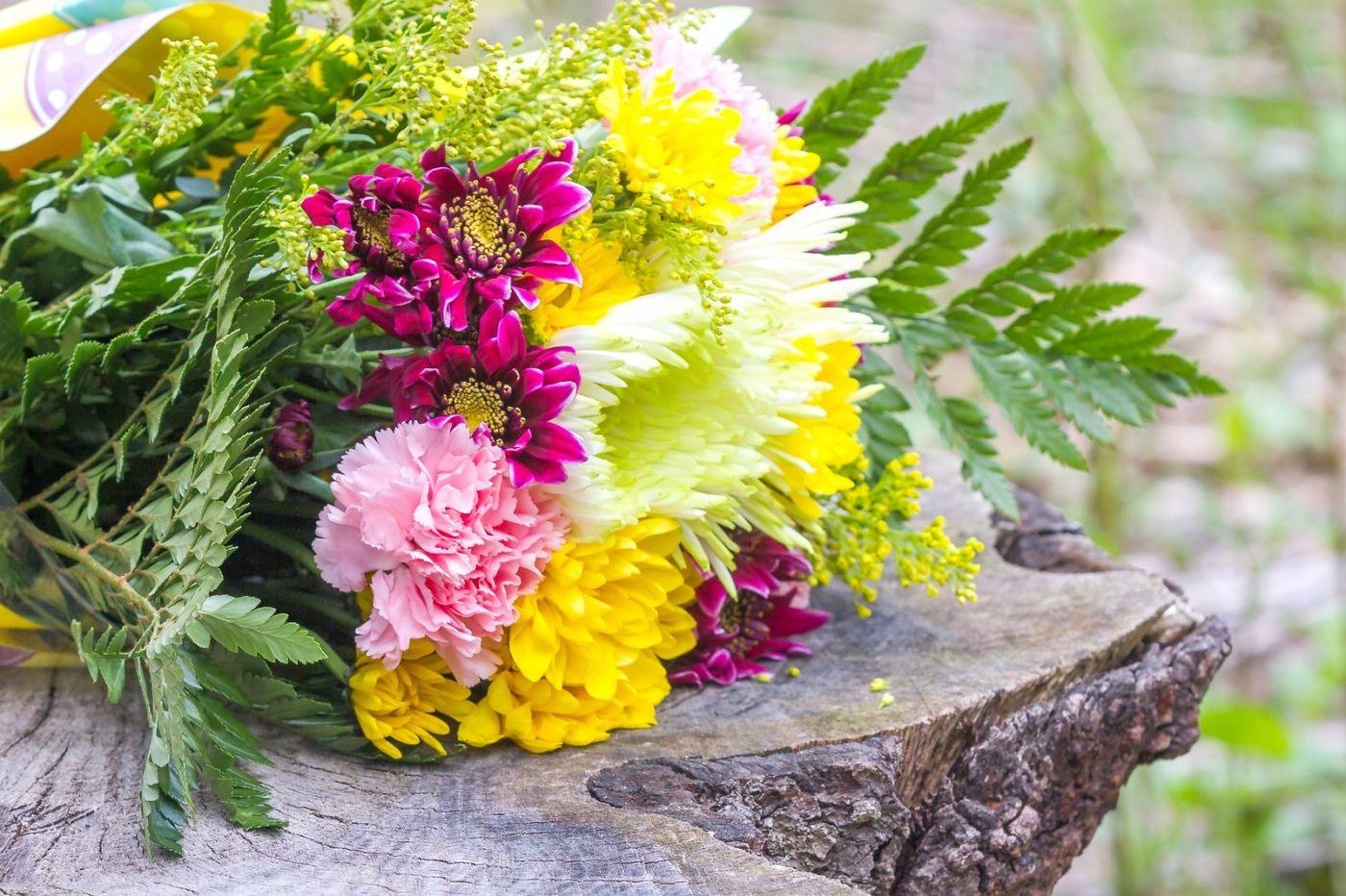 一束花的畅想_图1-23
