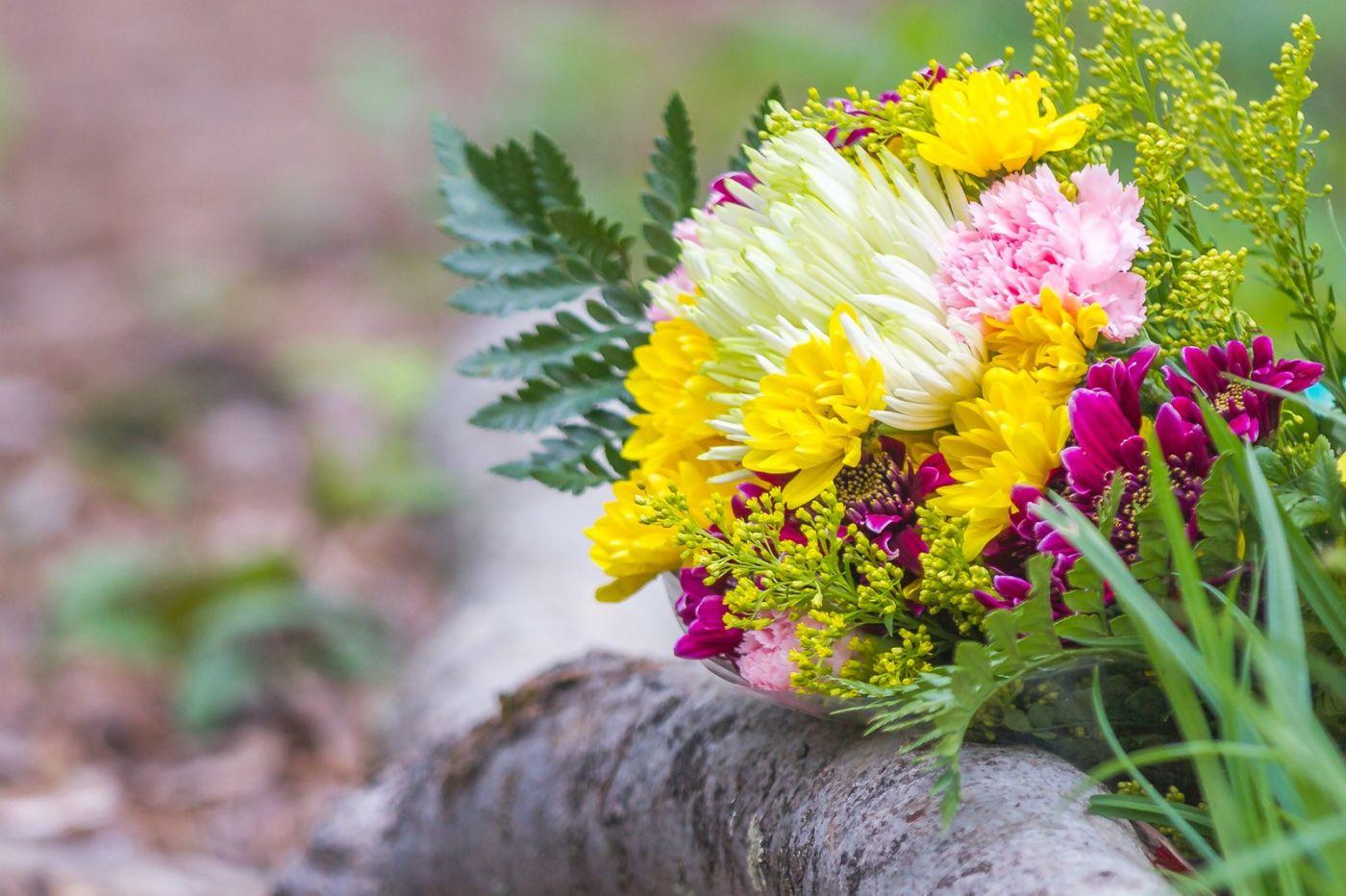 一束花的畅想_图1-24