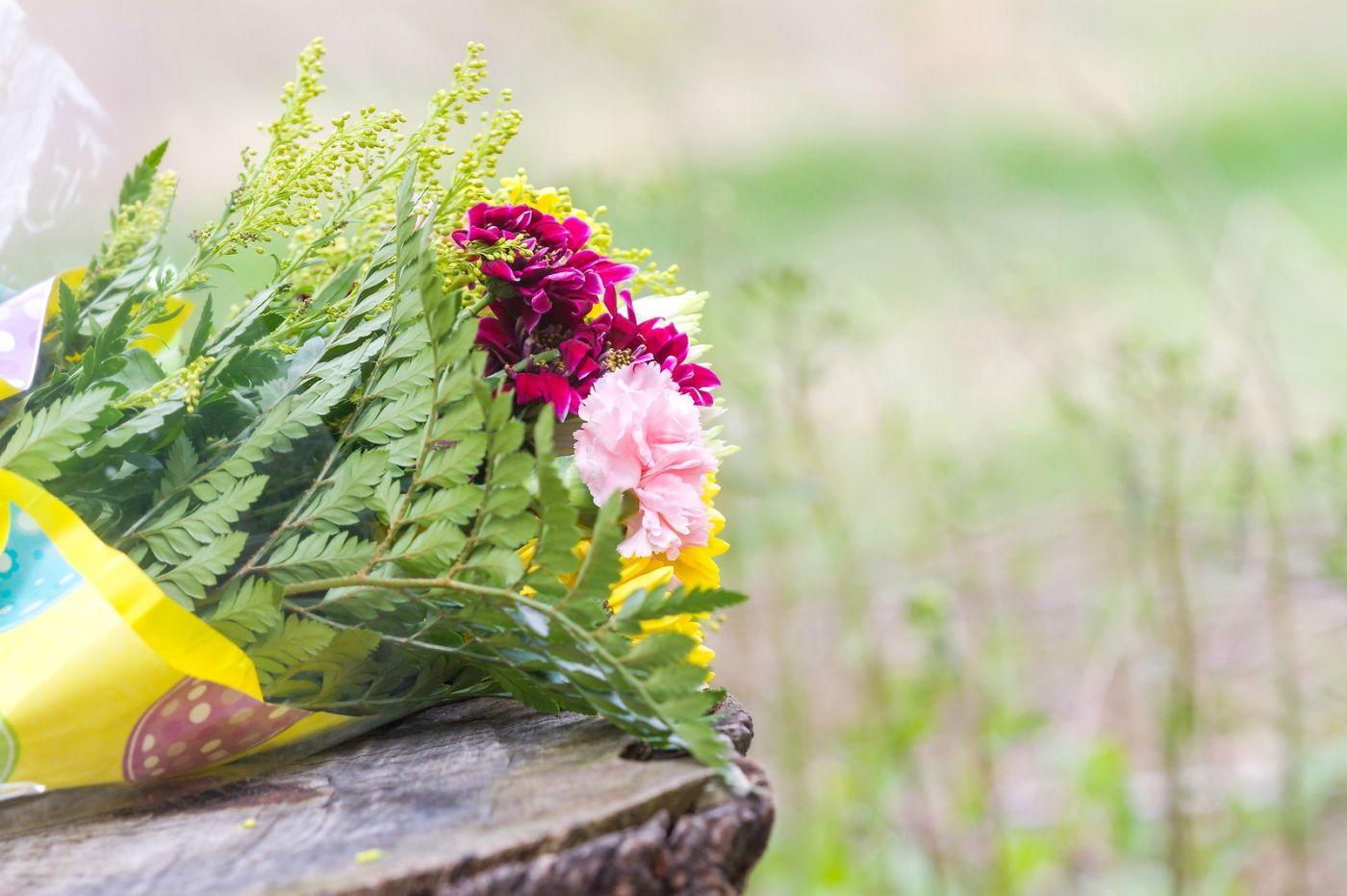 一束花的畅想_图1-20