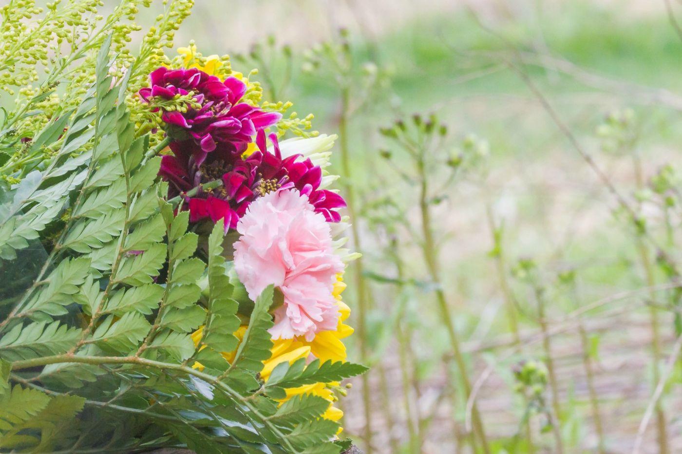 一束花的畅想_图1-8