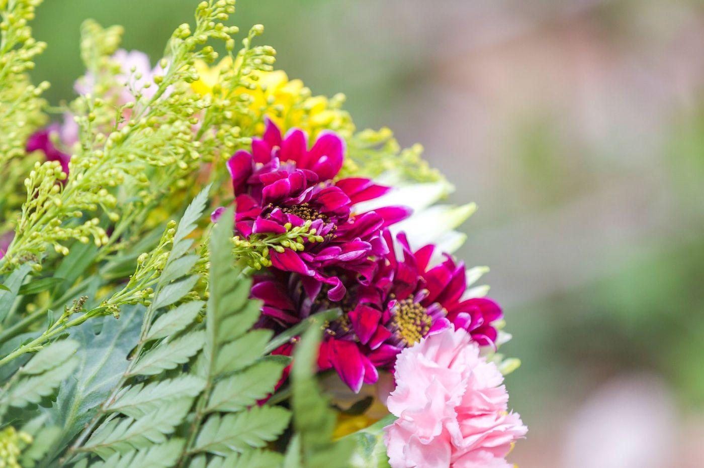 一束花的畅想_图1-26