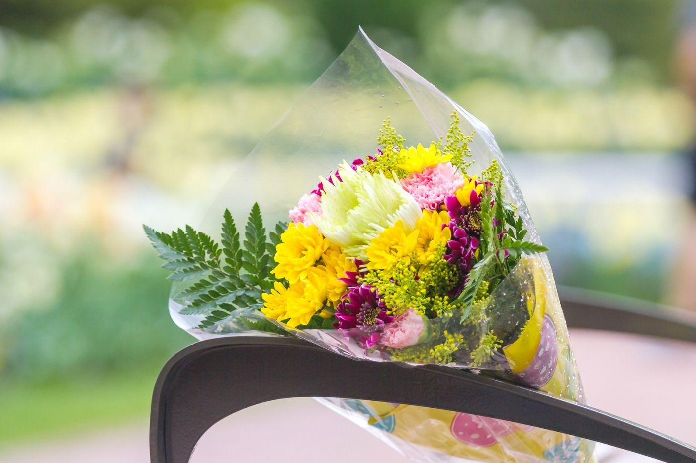 一束花的畅想_图1-27