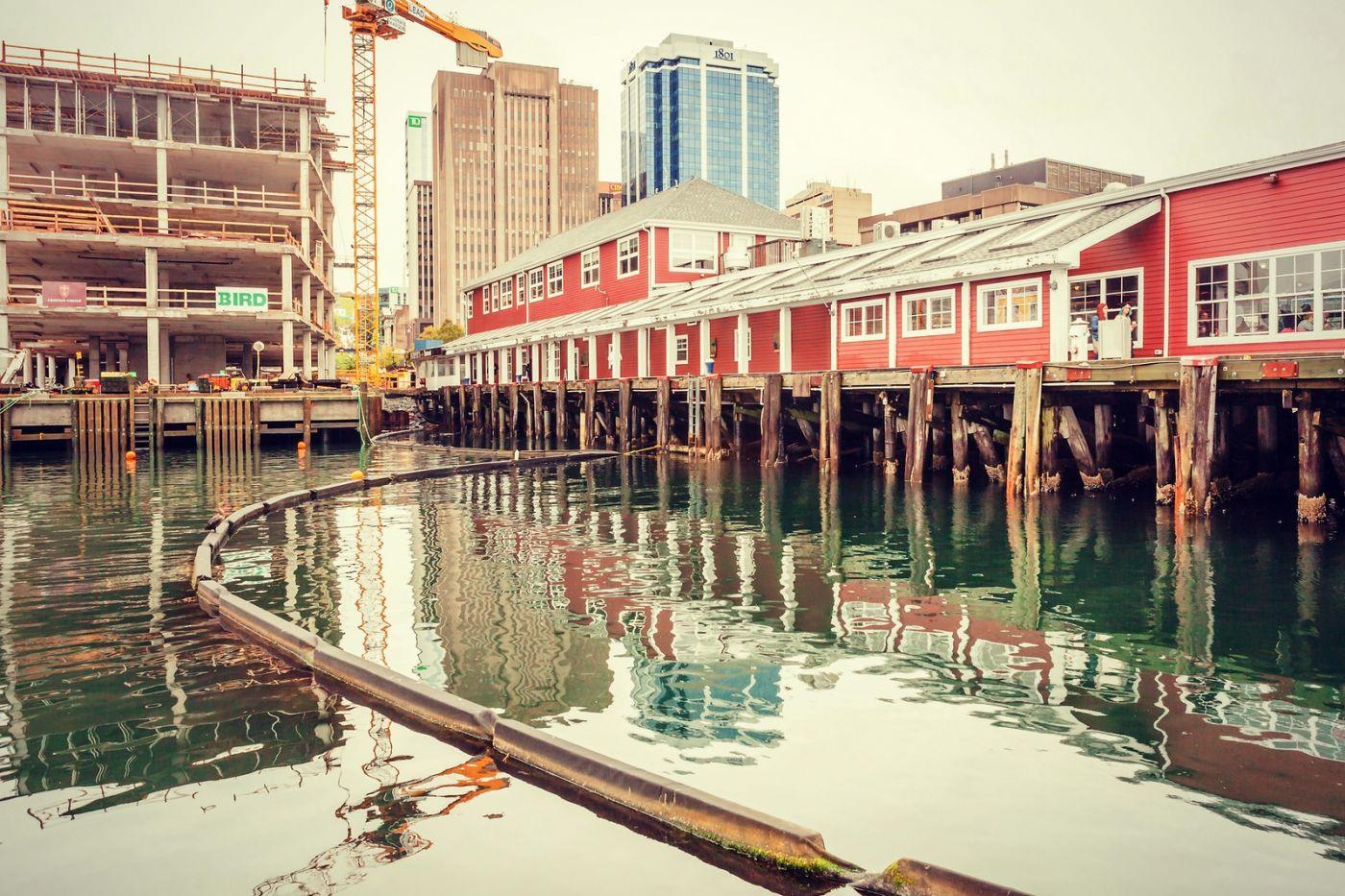 加拿大哈利法克斯(Halifax),很温馨的小城_图1-15