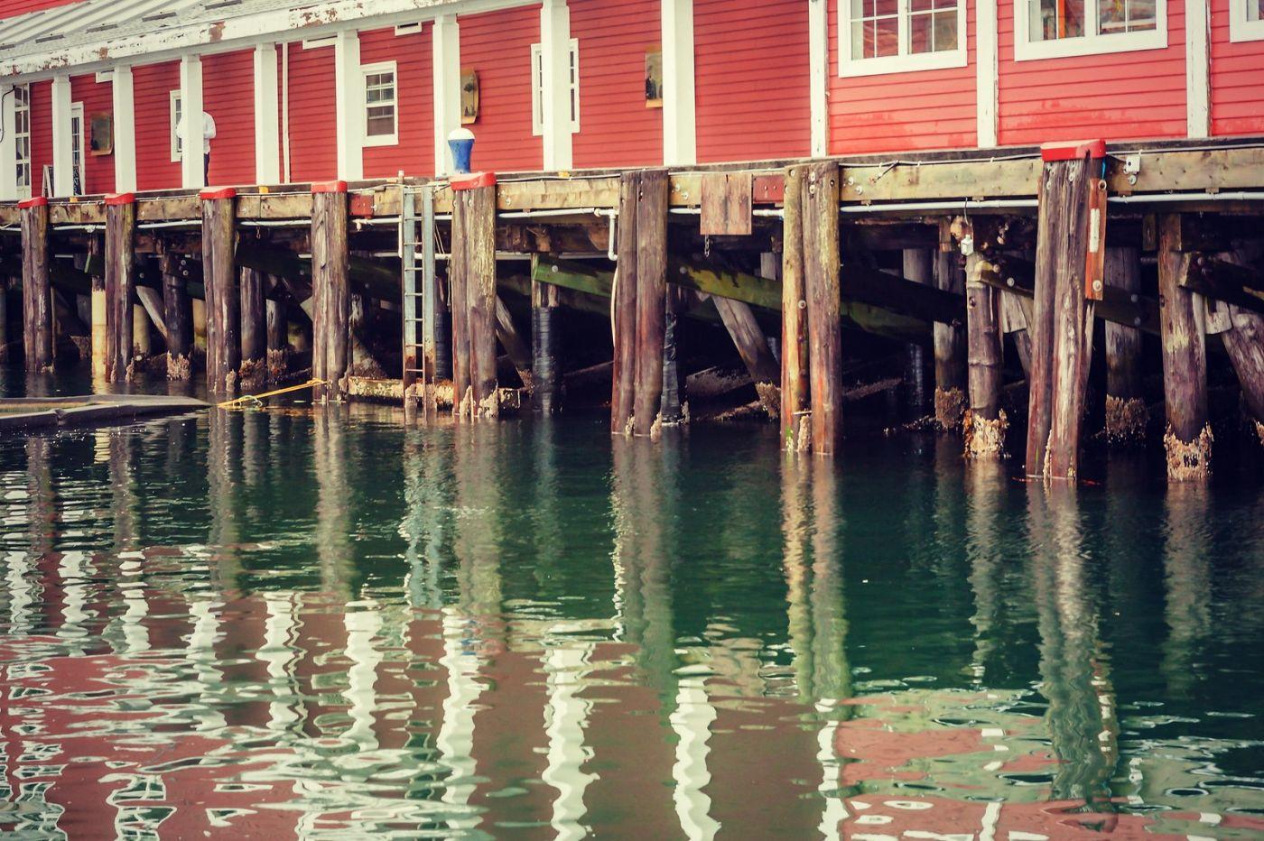 加拿大哈利法克斯(Halifax),很温馨的小城_图1-31