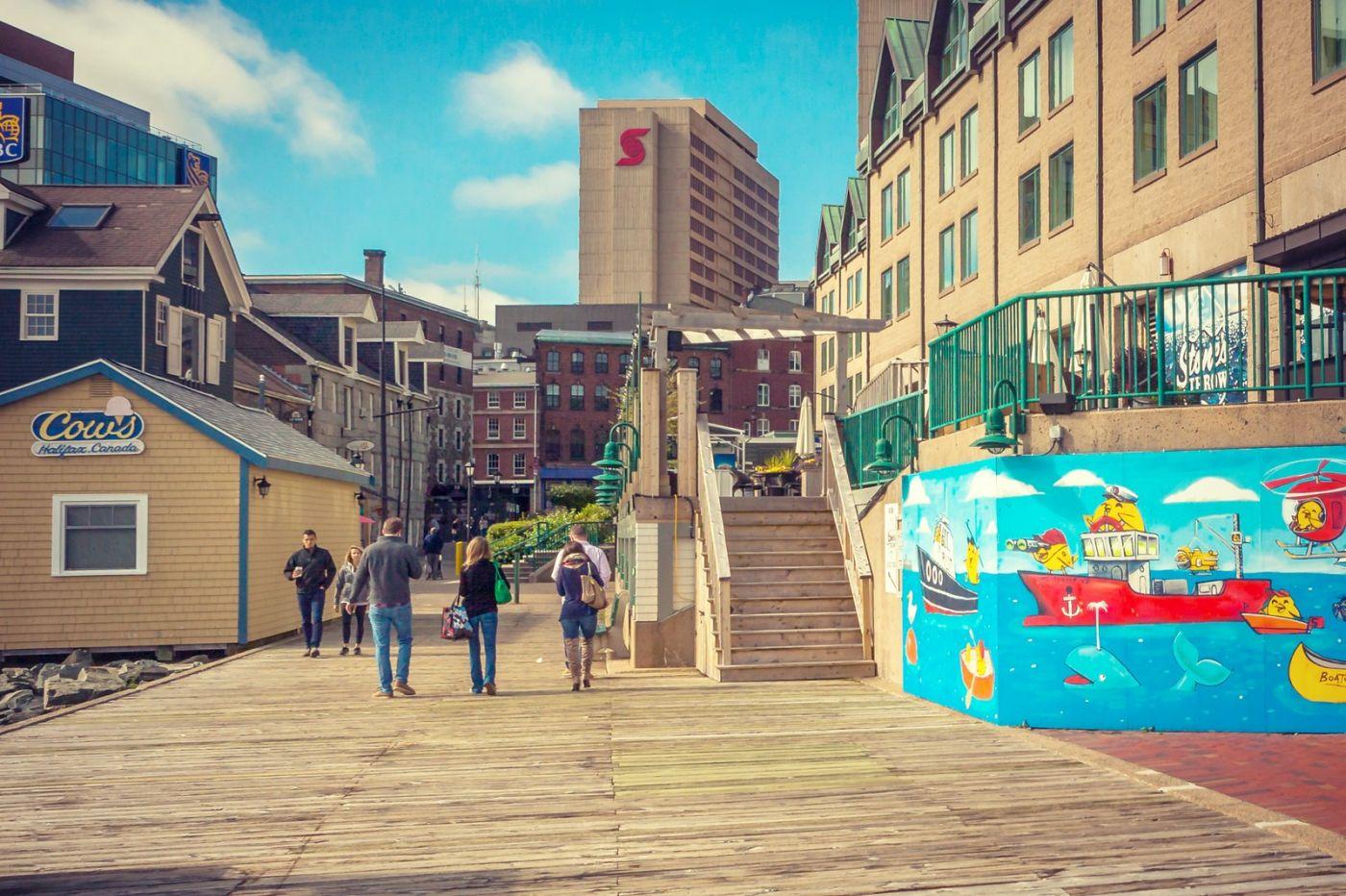 加拿大哈利法克斯(Halifax),很温馨的小城_图1-38