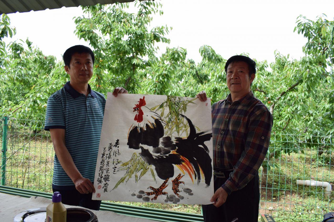 金龙祥和樱桃红_图1-10