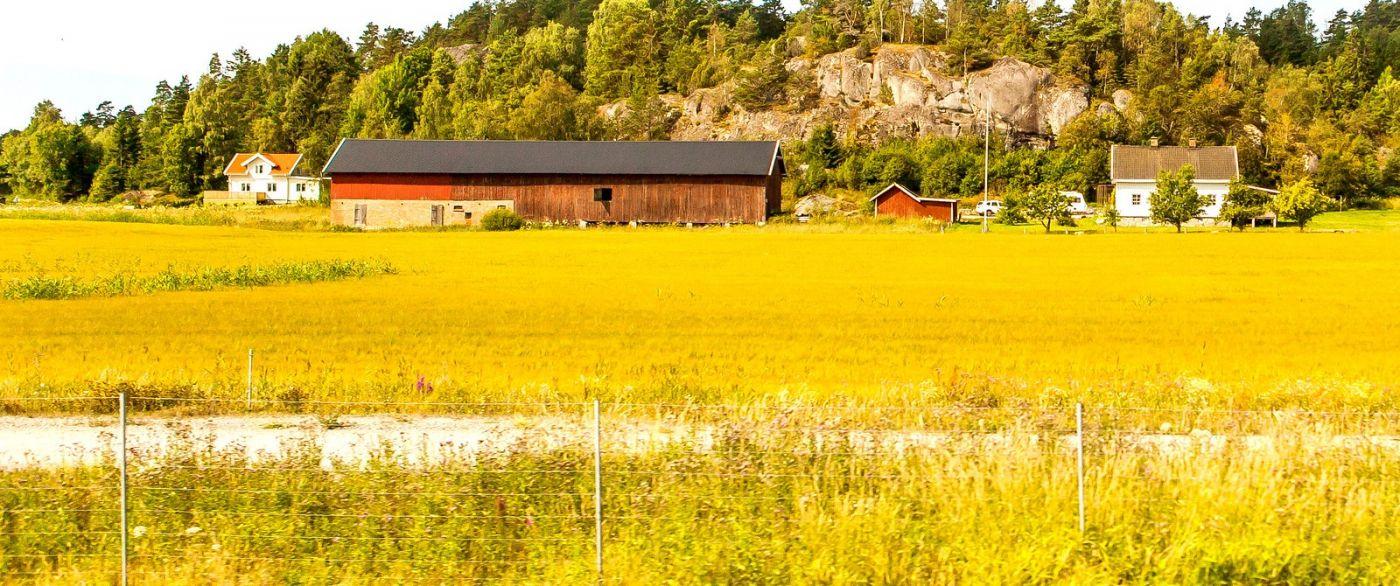 北欧旅途,漂亮的农室_图1-8