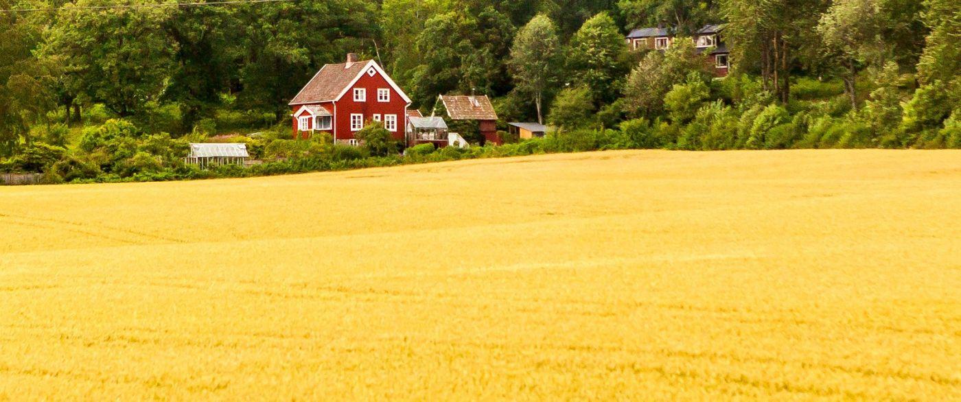 北欧旅途,漂亮的农室_图1-12
