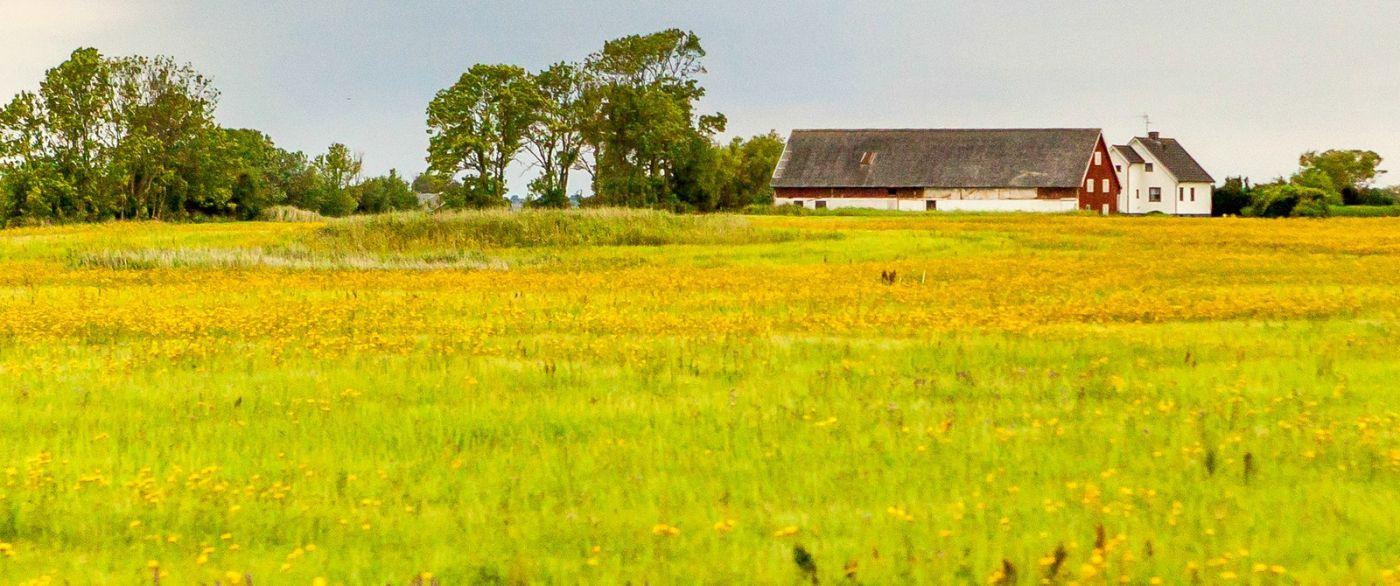 北欧旅途,漂亮的农室_图1-16