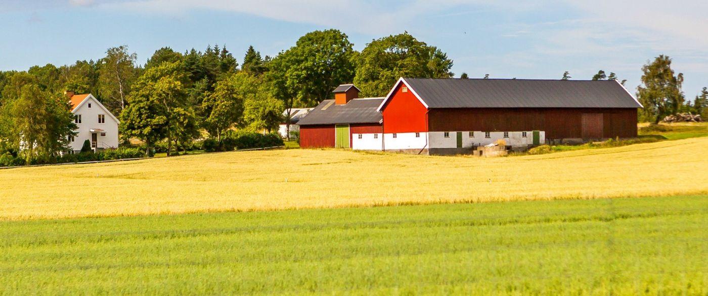 北欧旅途,漂亮的农室_图1-14
