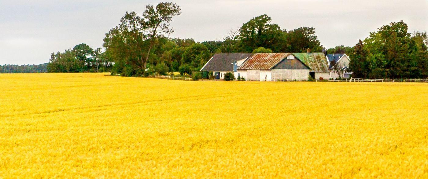 北欧旅途,漂亮的农室_图1-13
