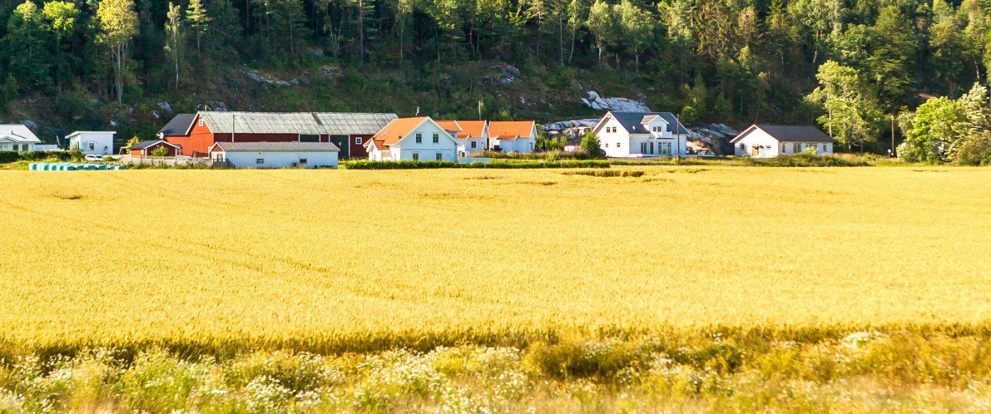 北欧旅途,漂亮的农室_图1-18