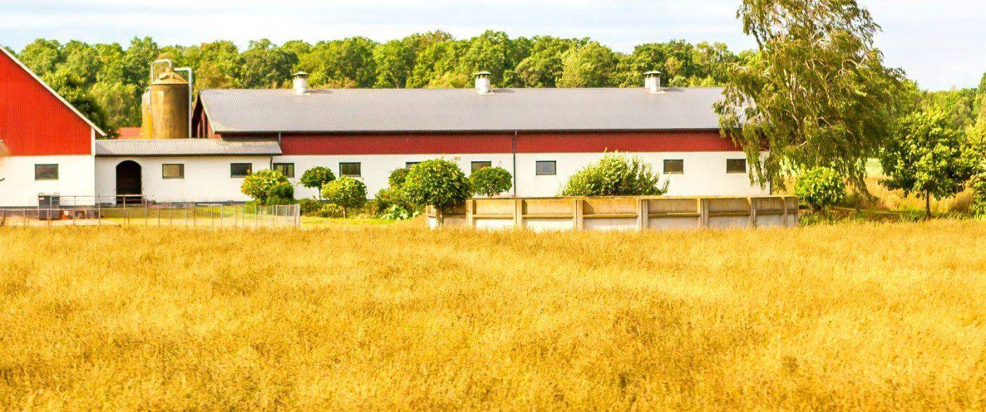 北欧旅途,漂亮的农室_图1-19