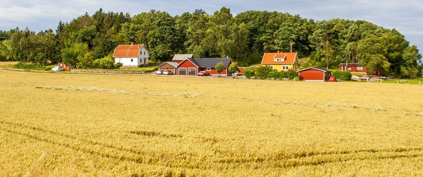 北欧旅途,漂亮的农室_图1-24