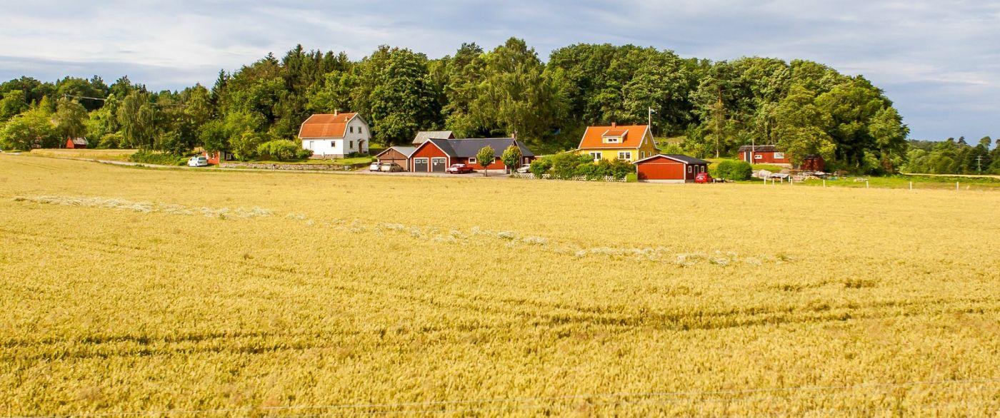 北欧旅途,漂亮的农室_图1-21