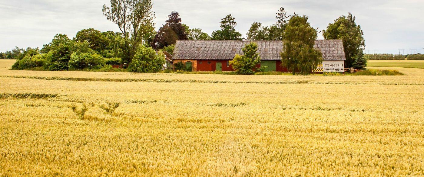 北欧旅途,漂亮的农室_图1-25