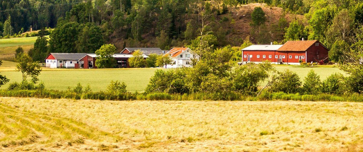 北欧旅途,漂亮的农室_图1-30