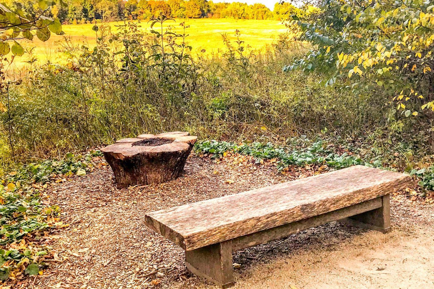 宾州长木公园,过往的记忆_图1-35