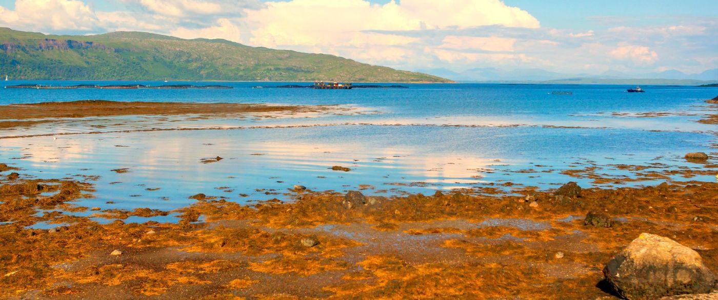 苏格兰美景,月牙般的海湾_图1-5