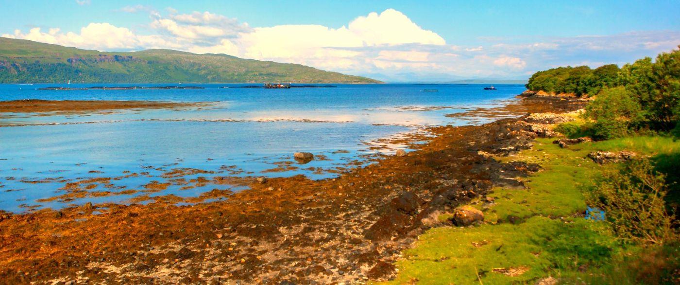 苏格兰美景,月牙般的海湾_图1-15
