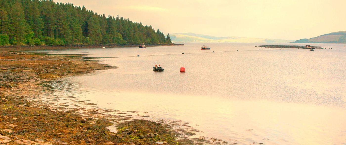 苏格兰美景,月牙般的海湾_图1-20