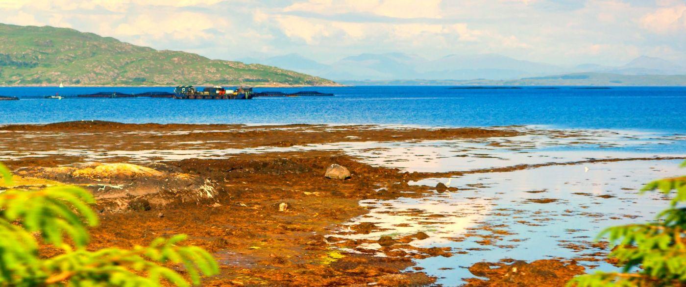 苏格兰美景,月牙般的海湾_图1-28