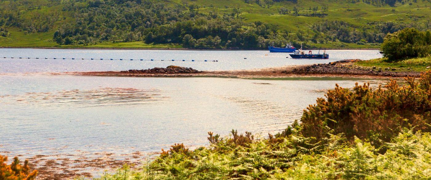苏格兰美景,月牙般的海湾_图1-33