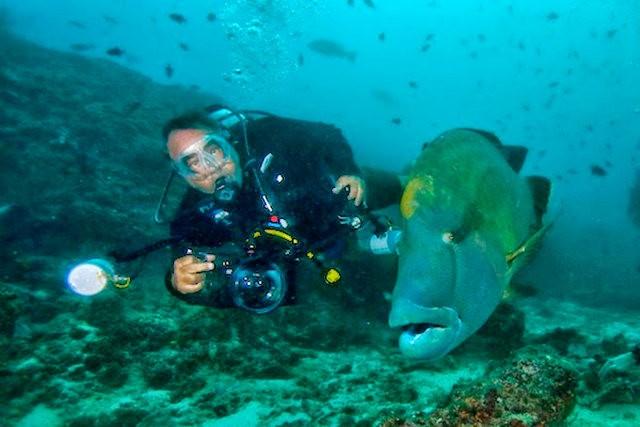 夏威夷的观赏鱼_图1-7
