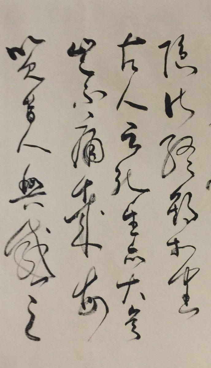 中国书法草书艺术—艺术家石维加_图1-6