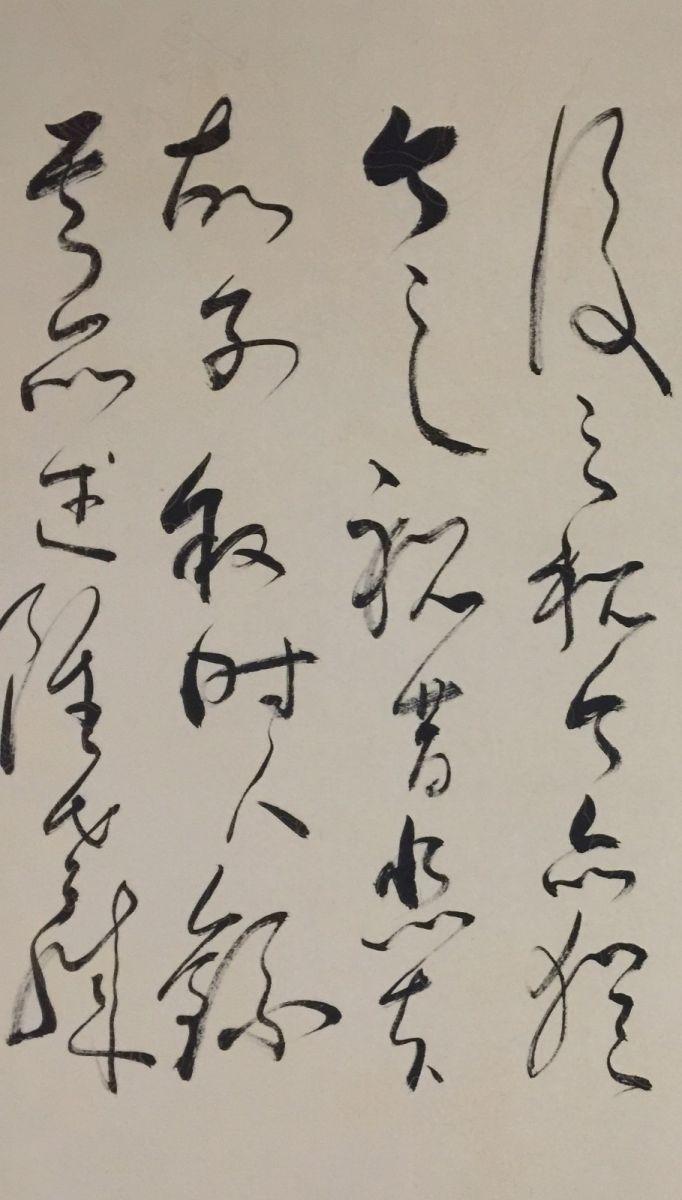 中国书法草书艺术—艺术家石维加_图1-8