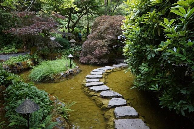 6月的维多利亚小花园_图1-10