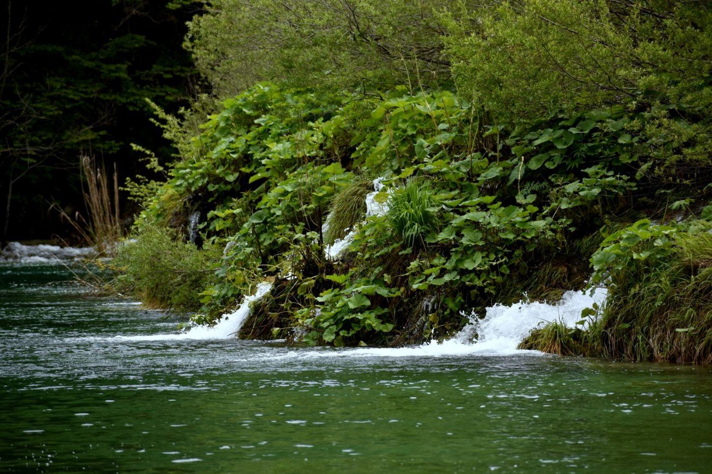 克罗地亚十六湖国家公园_图1-8