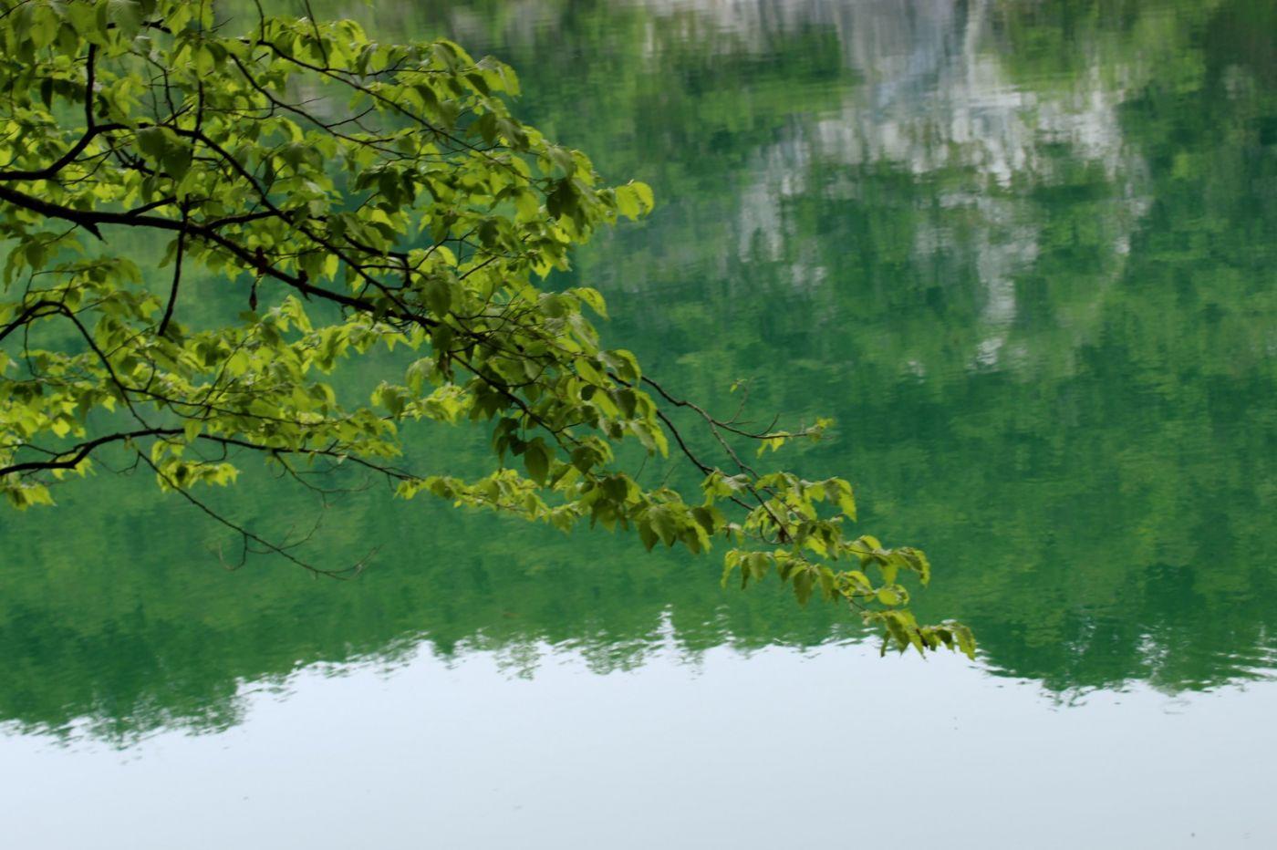 克罗地亚十六湖国家公园_图1-27