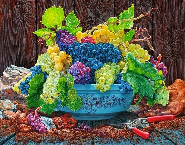 超现实的花卉植物画作_图1-22