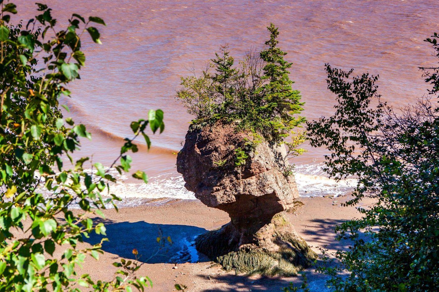 加拿大Hopewell岩石,潮起潮落显英姿_图1-2
