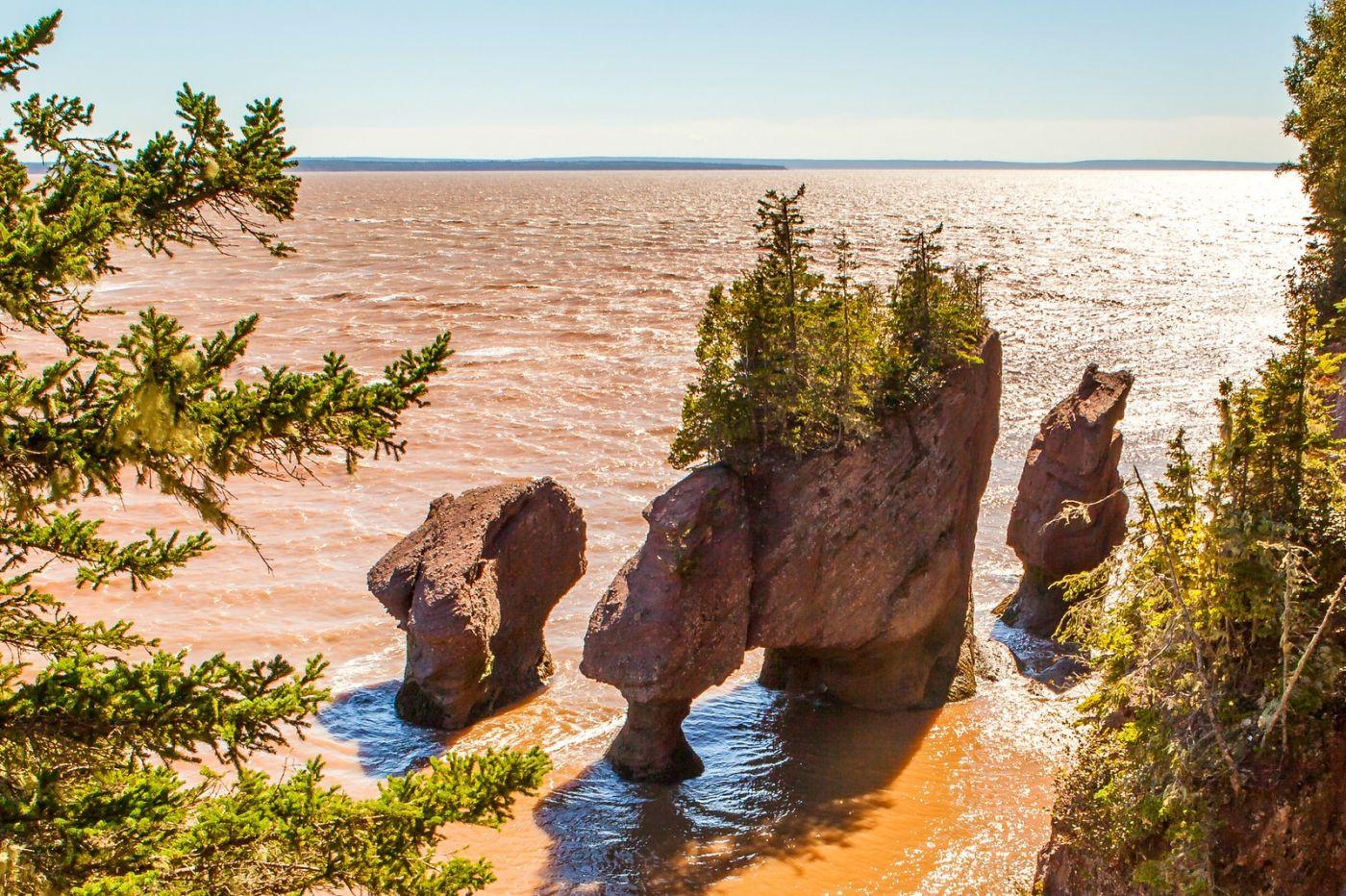 加拿大Hopewell岩石,潮起潮落显英姿_图1-3