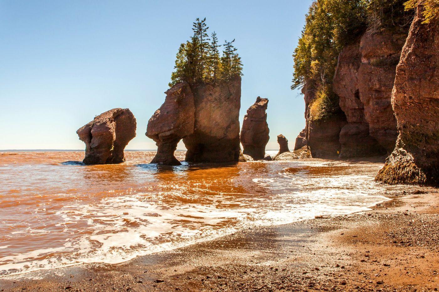 加拿大Hopewell岩石,潮起潮落显英姿_图1-1