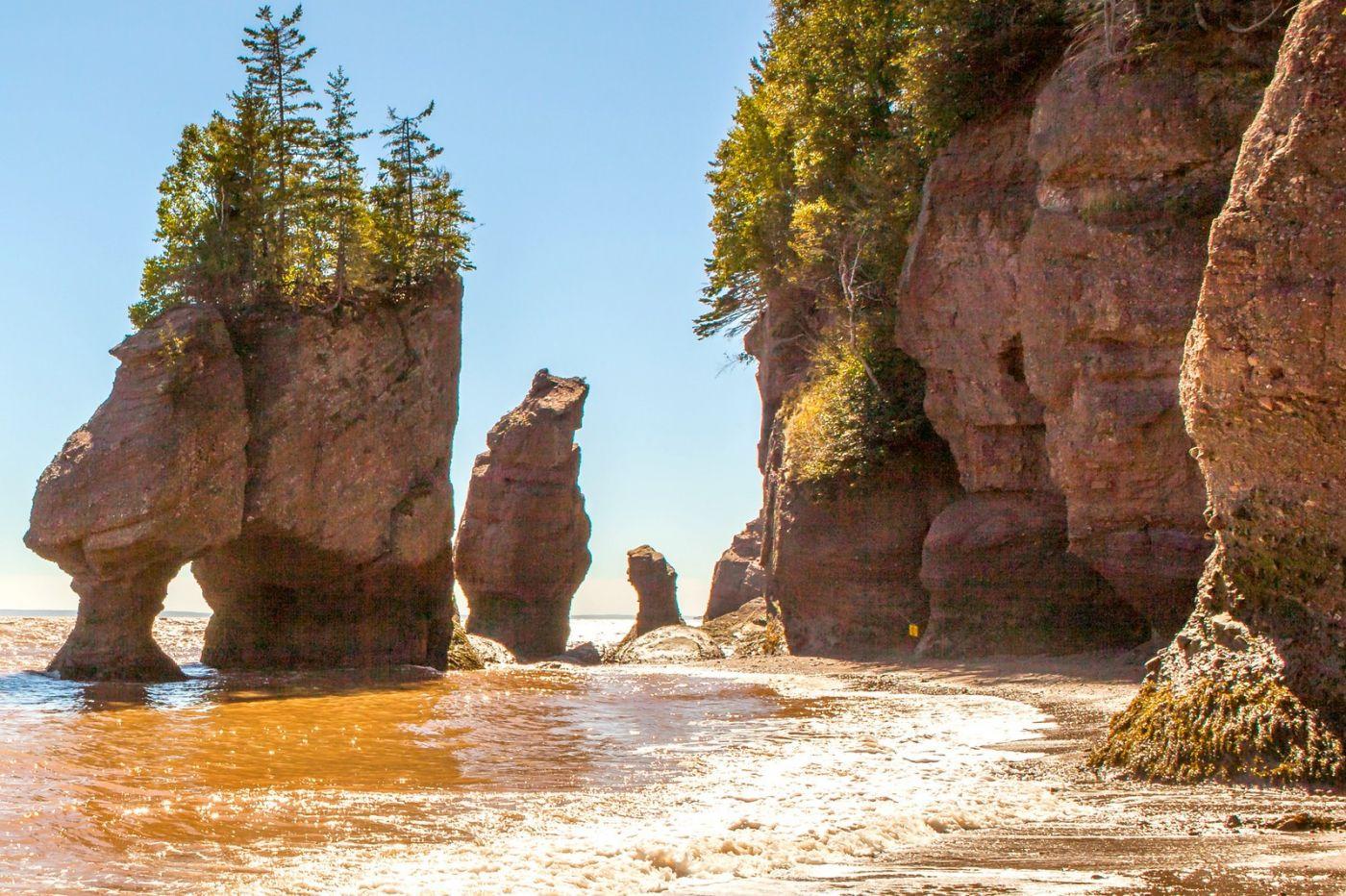 加拿大Hopewell岩石,潮起潮落显英姿_图1-6