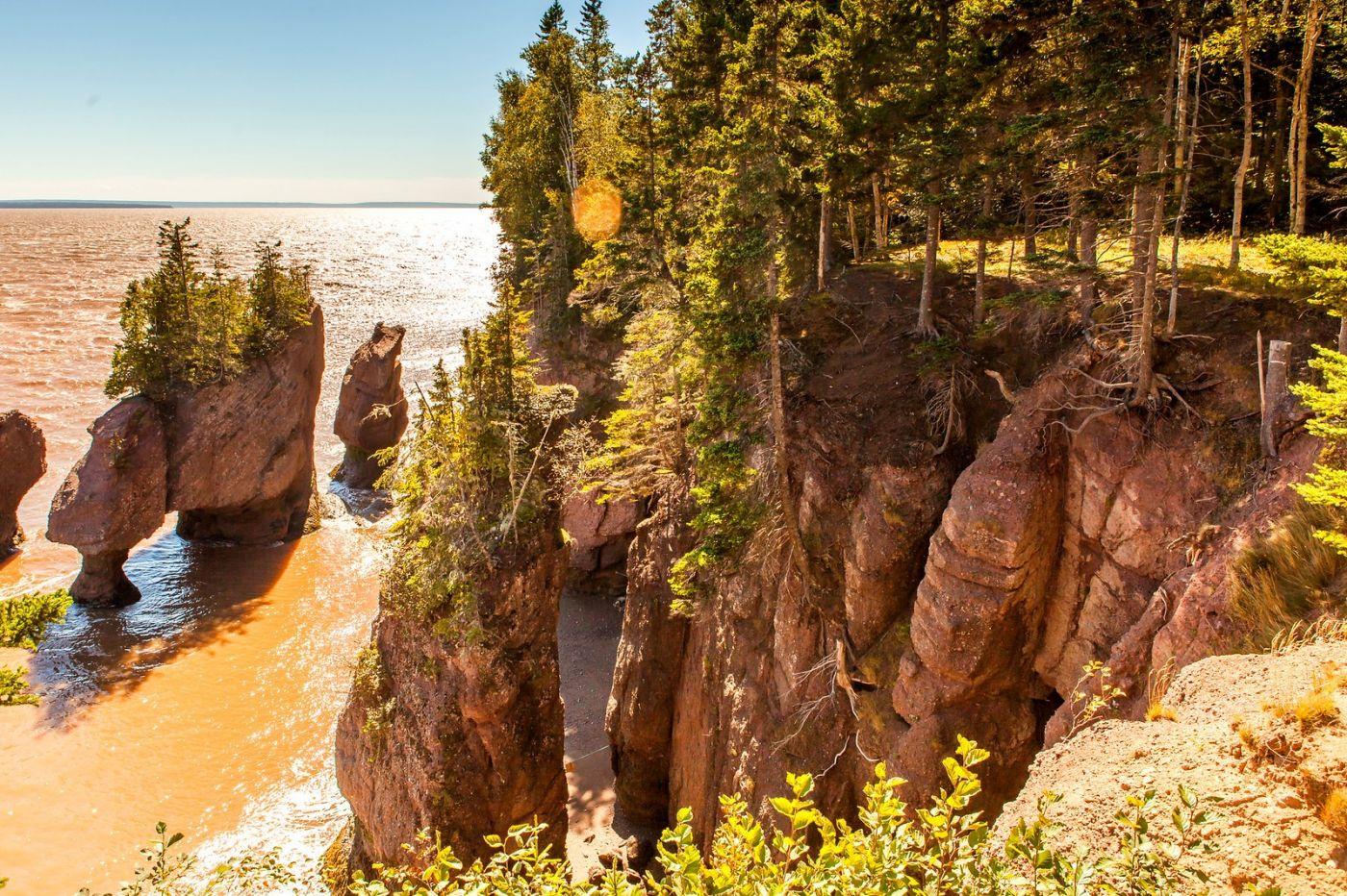 加拿大Hopewell岩石,潮起潮落显英姿_图1-8