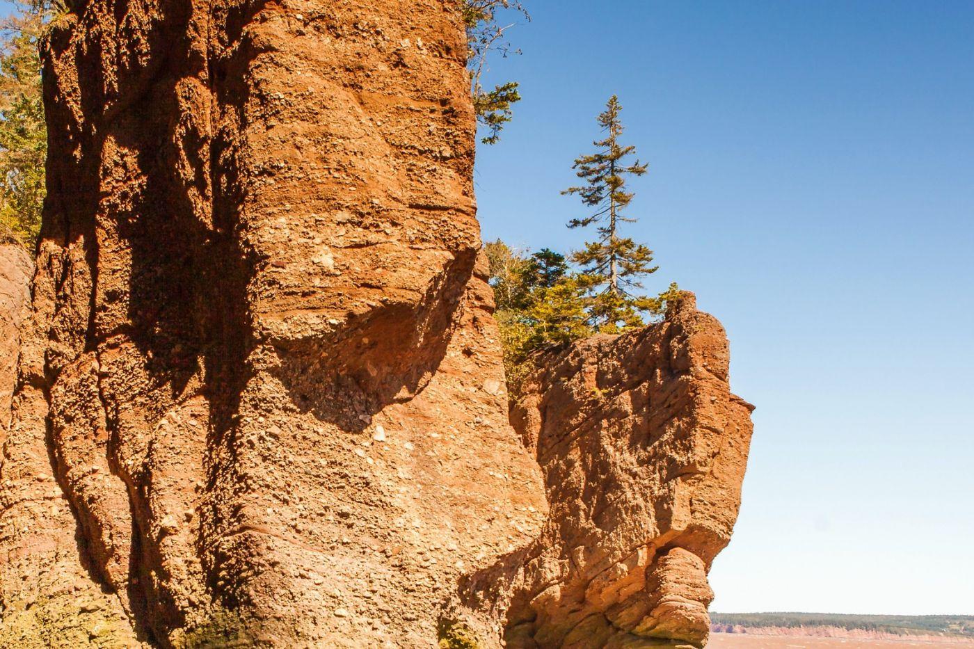加拿大Hopewell岩石,潮起潮落显英姿_图1-10