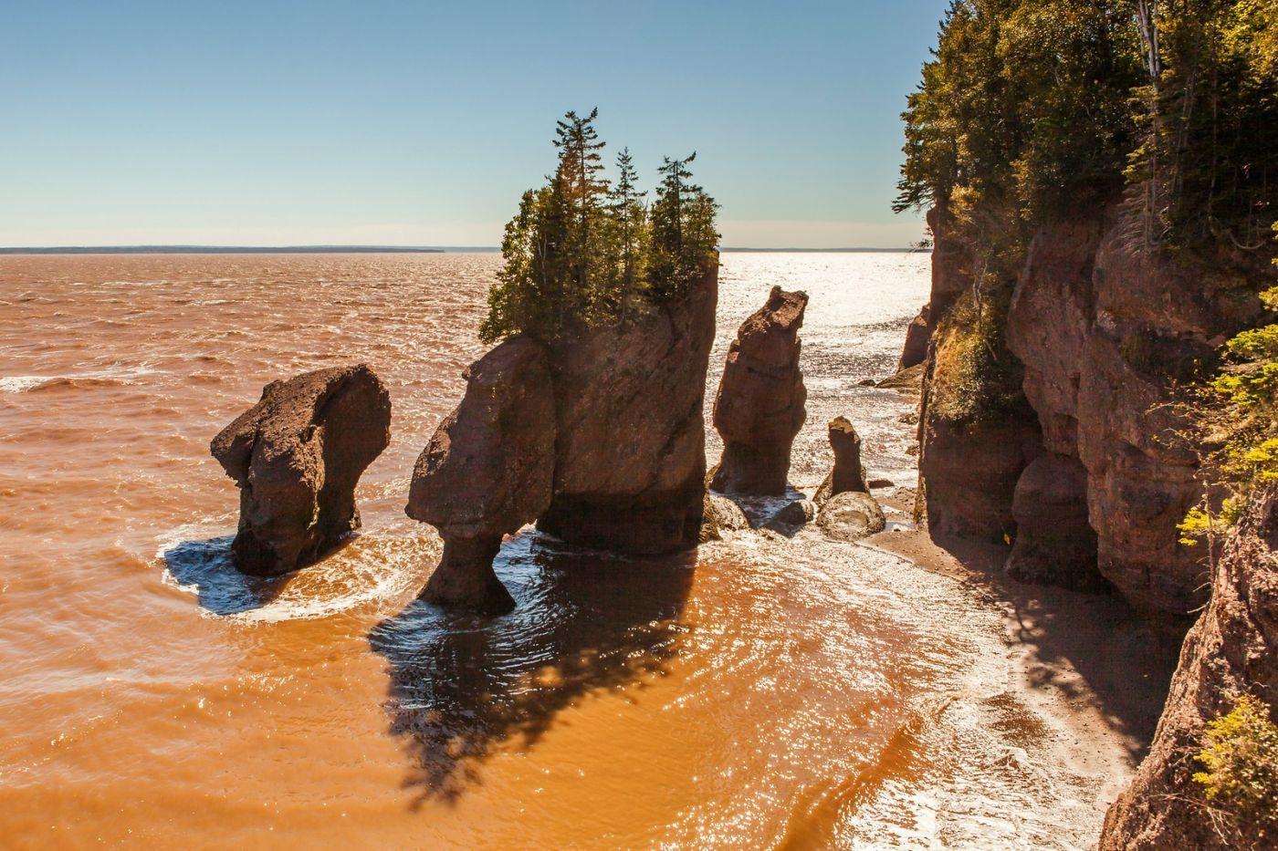 加拿大Hopewell岩石,潮起潮落显英姿_图1-11